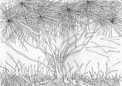 Arbuste dans le vent - croquis au feutre noir - 24 cm x 32 cm