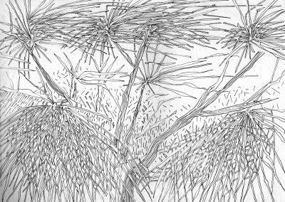 Branchages et vent - Croquis au feutre noir - 24 cm x 32 cm