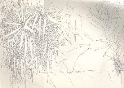 Feuillages de rivière - Croquis au feutre noir - 24 cm x 32 cm