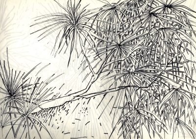 Feuillages et branches - croquis au feutre noir - 24 cm x 32 cm