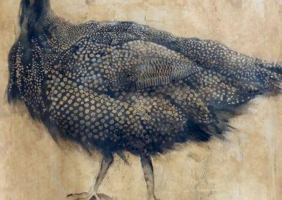 Pintade - Fusain sur papier 65 cm x 50 cm