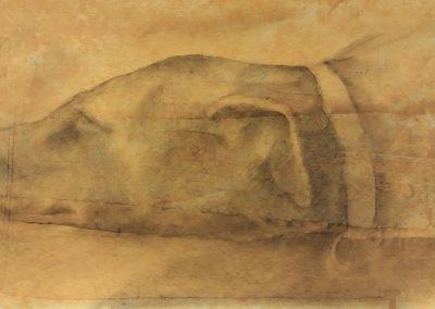 Tête de chien au collier - Fusain sur papier - 60 cm x 25 cm