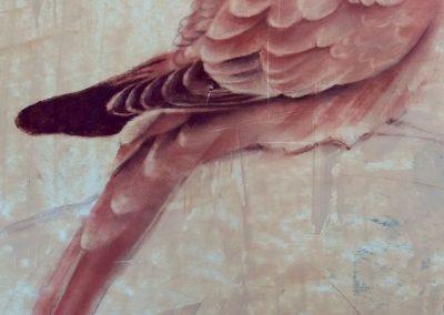 Tourterelle inquiétée - pastel sur papier 50 cm x 32 cm