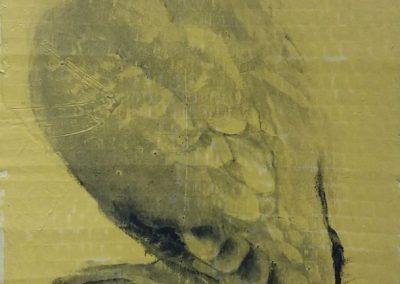 Tourterelle intriguée - Fusain sur carton 33 cm x 17 cm