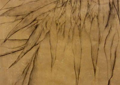 Feuillages du Guadiana - Fusain sur papier 50 cm x 65 cm