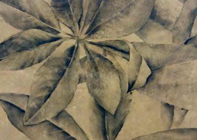 Feuilles de magnolia - Fusain sur papier 50 cm x 65 cm