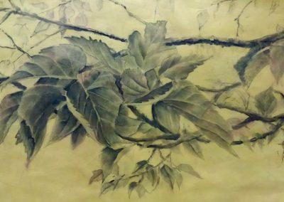 Branche de Mûrier – Fusain sur papier 105 x 37 cm