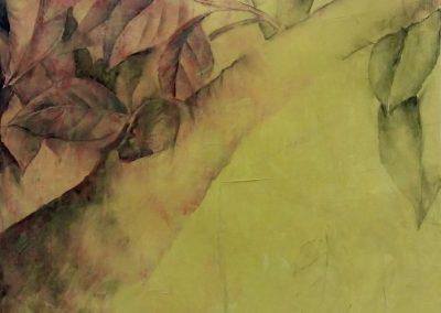 Branche de Magnolia – Fusain et sanguine sur papier 65 x 50 cm