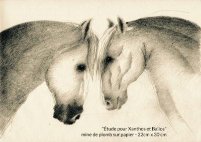 Étude pour Xanthos et Balios - mine de plomb sur papier - 22 cm x 30 cm
