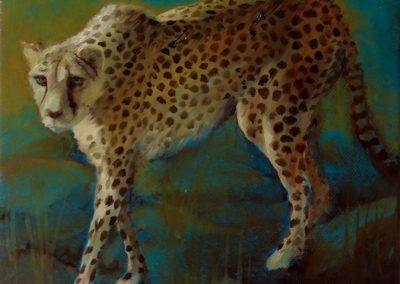 Guépard le soir - Huile sur toile 20 cm x 20 cm