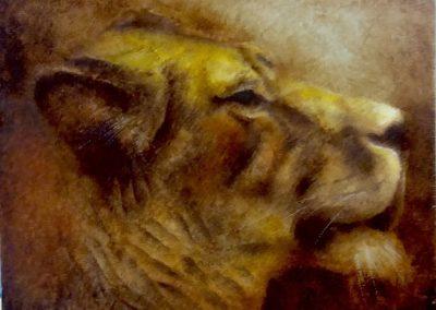Lionne - Huile sur bois 22 cm x 28 cm